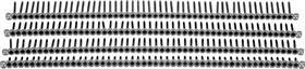 zoom_bs_csft+csct_769142_p_01a